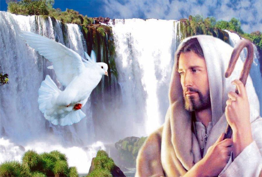 http://escolatrabalhoevida.com.br/wp-content/uploads/2013/06/Jesus_Cristo_o_Salvador_Escola-Trabalho-e-Vida.jpg