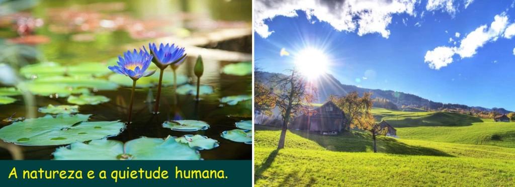Quietude Humana é fundamental