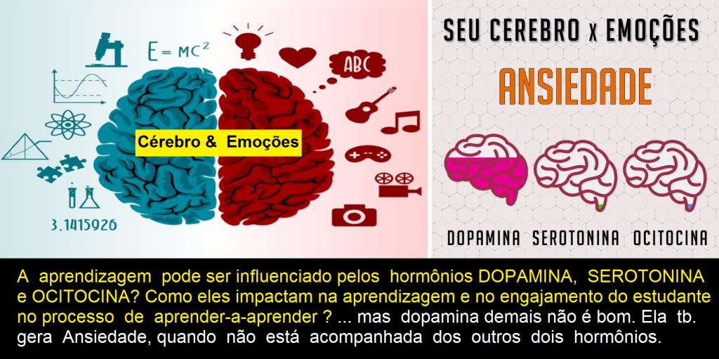 Cérebro e Emoções