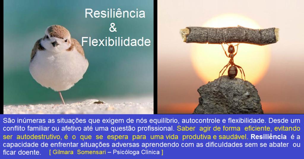 Resiliência e Flexibilidade