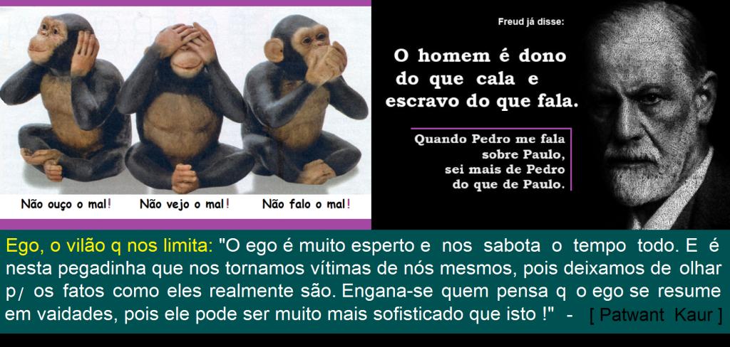 Ego_Comunicação_Vaidades