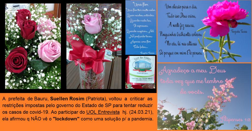 Flores_Florista_Post